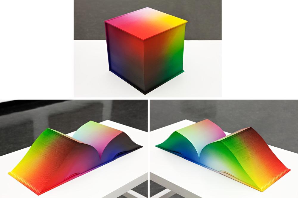 Tauba Auerbach - artist - Color Cube
